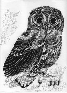 an innocent owl by hgmaniac15 da0gl73 216x300 - Bộ tranh vẽ cách điệu động vật ấn tượng bằng bút Artline