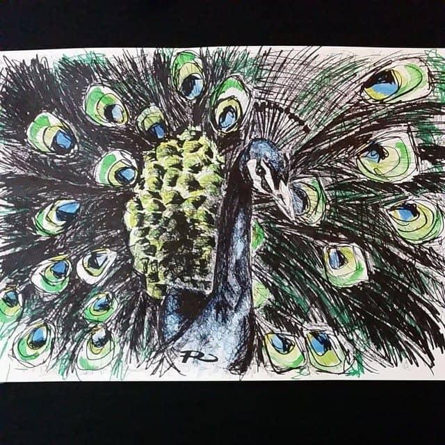 10483331 1554864161407509 393598418 n - Cảm hứng Artline #15: Bộ tranh vẽ chim chóc bằng bút lông dầu