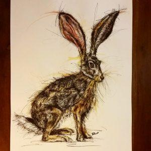 10852751 381698058675567 13807582 n 300x300 - Cảm hứng Artline #8: Bộ tranh động vật độc đáo của nữ họa sĩ Australia