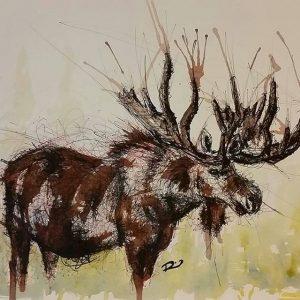 11821302 1156756267671846 1146177871 n 300x300 - Cảm hứng Artline #8: Bộ tranh động vật độc đáo của nữ họa sĩ Australia