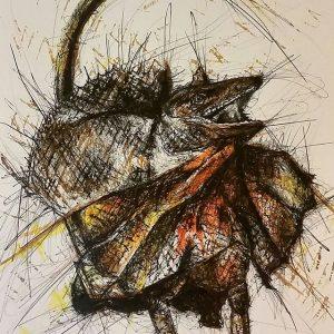 11918055 1043285745705605 431250319 n 300x300 - Cảm hứng Artline #8: Bộ tranh động vật độc đáo của nữ họa sĩ Australia