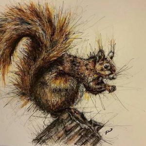 12555882 465916810258230 1917211987 n 300x300 - Cảm hứng Artline #8: Bộ tranh động vật độc đáo của nữ họa sĩ Australia