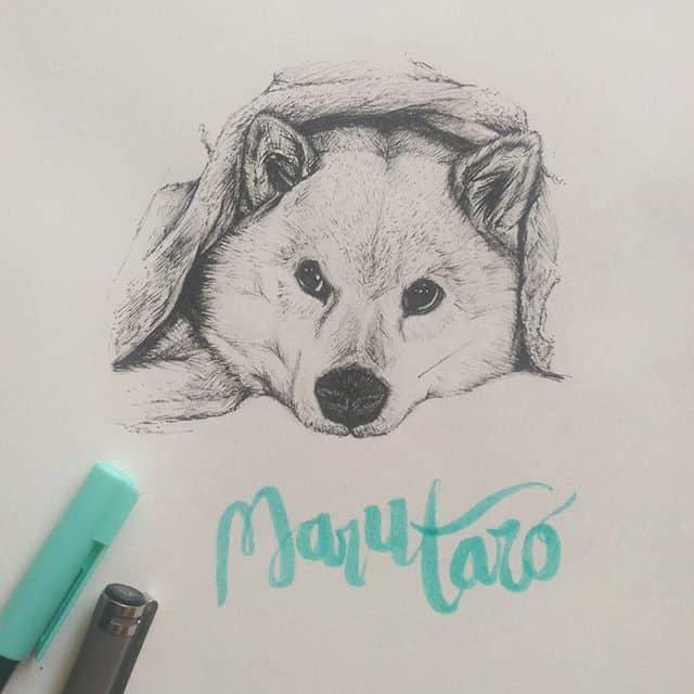 12677703 954509954630646 1849891190 n - Vẽ ký họa cún cưng bằng bút kỹ thuật Artline