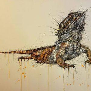 13686958 633538886801630 841625011 n 300x300 - Cảm hứng Artline #8: Bộ tranh động vật độc đáo của nữ họa sĩ Australia