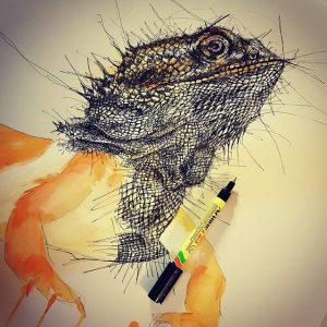 14052275 948027888653546 2090817911 n 300x300 - Cảm hứng Artline #8: Bộ tranh động vật độc đáo của nữ họa sĩ Australia