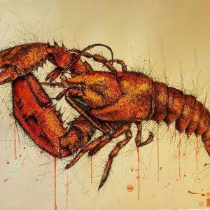14566708 1791155264491180 6624630438650445824 n 300x300 - Cảm hứng Artline #8: Bộ tranh động vật độc đáo của nữ họa sĩ Australia