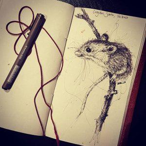 19533835 642102859314955 8462695043394699264 n 300x300 - Cảm hứng Artline #13: Bộ tranh động vật đầy ấn tượng bằng bút kỹ thuật Artline
