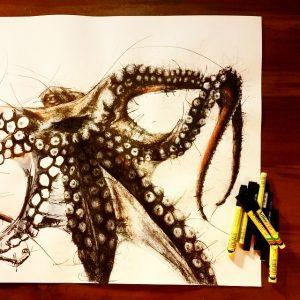 924113 1402951173331924 1979839361 n 300x300 - Cảm hứng Artline #8: Bộ tranh động vật độc đáo của nữ họa sĩ Australia