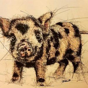 924727 883420998384275 200438840 n 300x300 - Cảm hứng Artline #8: Bộ tranh động vật độc đáo của nữ họa sĩ Australia